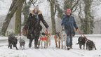 Dog walkers in the snow in north London
