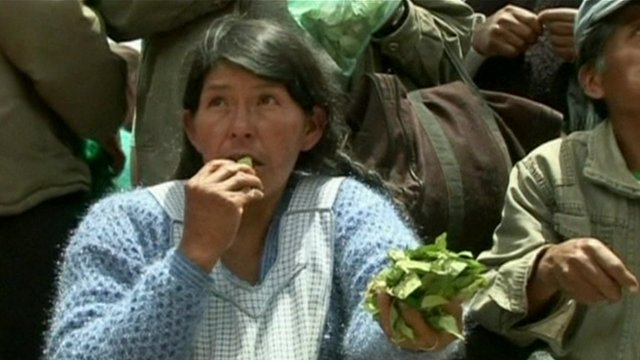 Woman chewing coca leaves