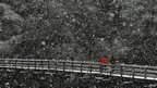 People cross a snow covered bridge