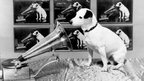 HMV's Nipper The Dog