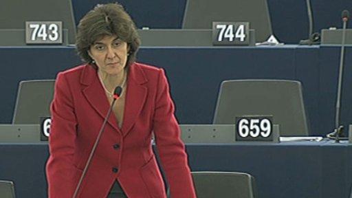 Sylvie Goulard MEP