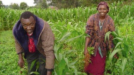 Kenya, farmers