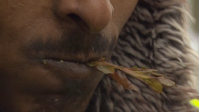 Man chewing Khat
