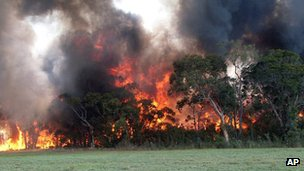 Bush fire in Cessnock, NSW Australia (18 Jan 2013)
