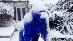 Charlotte Airey's picture of a snow-covered Gorilla statue at Bristol Zoo