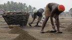 Women collecting top soil into baskets in the village of Djegbadji near Ouidah in Benin - Friday 11 January 2013