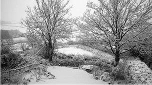 Fields around Cowbridge, Vale of Glamorgan