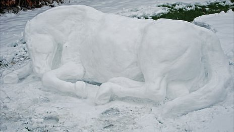 Life-size snow pony