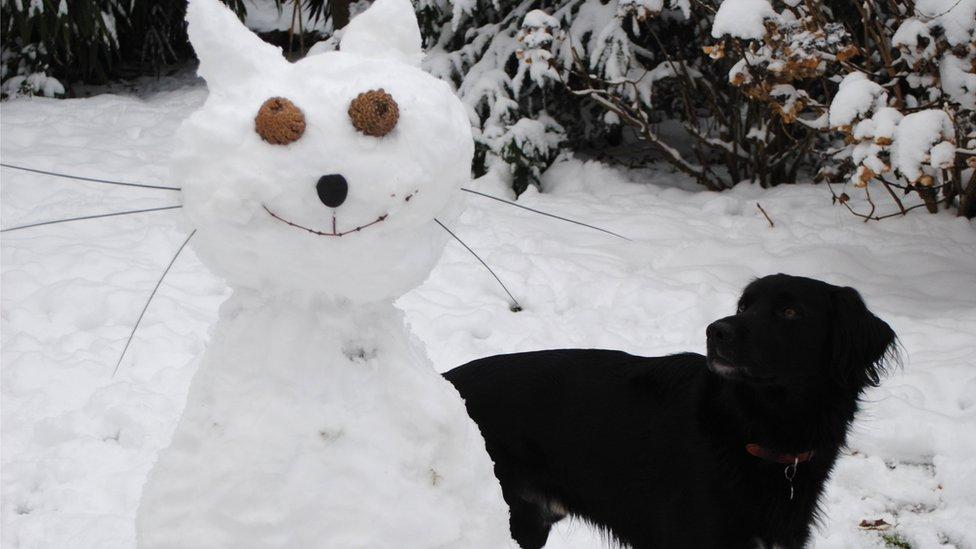 animals made of snow - photo #18