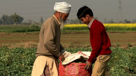 Farm workers in India