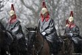 Troops of the Household Cavalry mounted division pass by Buckingham Palace on their way to Horseguards for their ceremonial duty as it begins to snow in London