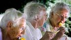 Three elderly women eat ice creams
