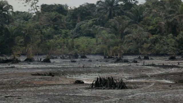Niger delta contaminated with oil