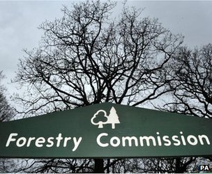 Forestry Commission sign (Image: PA)