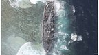 The USS Guardian is seen at the Vicinity of South Islet in Tubbataha Reefs after it ran aground in Palawan province, west of Manila (19 Jan 2013)
