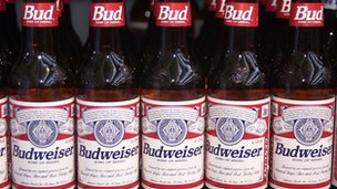 Bottles of Budweiser