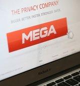 Mega site