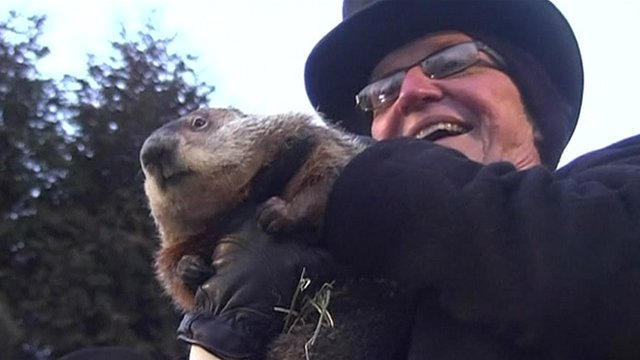 Man holds groundhog