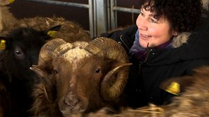 Sheep farmer Anette Back-Olsson with sheep