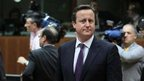 Cameron EU news briefing