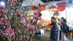 Peach flower on sale at the Victoria Park Lunar New Year Fair in Hong Kong
