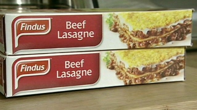Findus beef lasagne