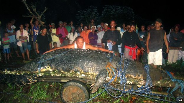 The world's largest crocodile kept in a zoo has died in the