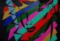 Color Veil by Barbara Nessim