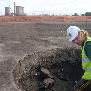 Animal skulls found during the dig at Didcot