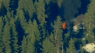 Cabin where Christopher Dorner was suspected to be holed up