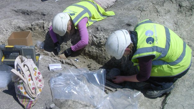 Excavation of a burial