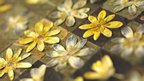Celandines by Jennie Ashmore who creates collages using leaves and flowers