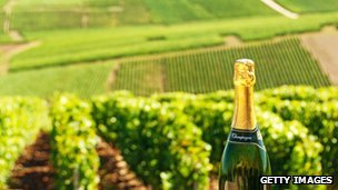 Champagne in a vineyard