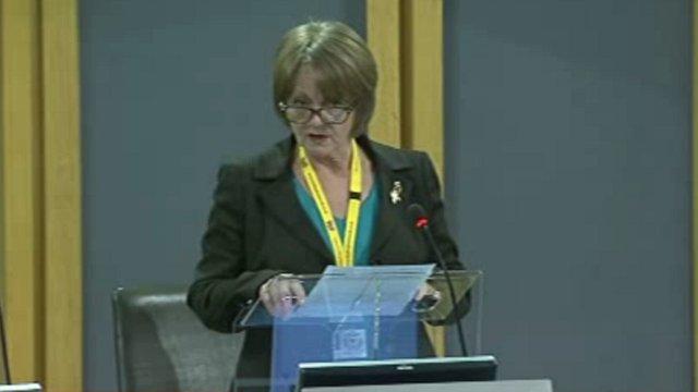 Finance Committee Chair Jocelyn Davies