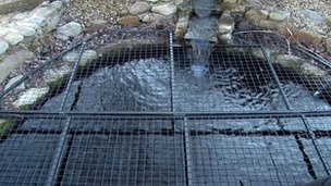 Metal grid on pond