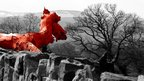 The Red Dragon of Wales has settled in Dyserth overlooking the Vale of Clwyd and Snowdonia in the distance.