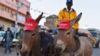 A pair of donkeys wear hats bearing the logo of Presidential candidate, Uhuru Kenyatta's political party, the National Alliance (TNA) in Ngong town near Nairobi - Thursday February 28, 2013
