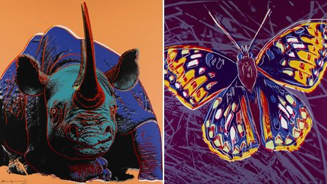 Black rhinoceros and San Francisco silverspot