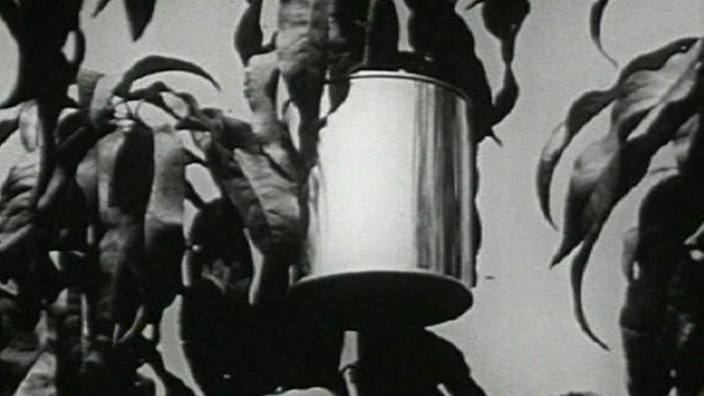 1956 film celebrates the tin can