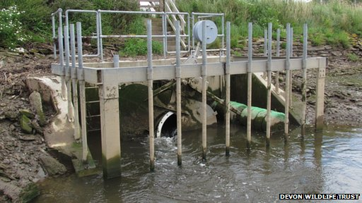 Tidal gate at South Efford Marsh
