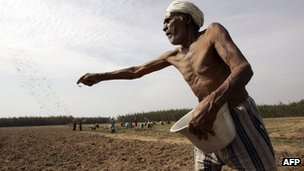 Indian farmer