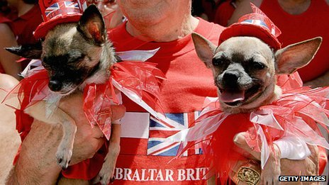 Gibraltan dogs in British hats