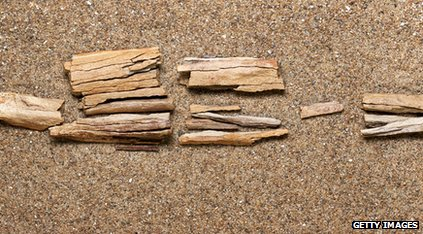 The camel bones