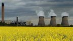 MPs agree new biofuel subsidies