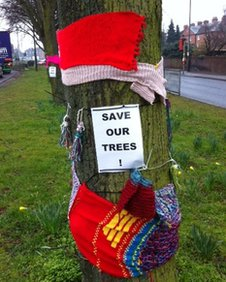 Protest sign objecting to plans to fell lime trees in Hereford