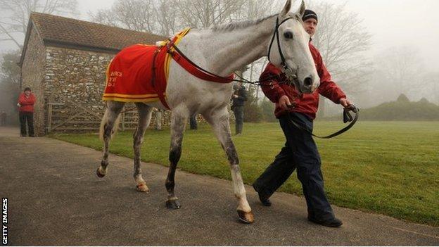 Grands Crus at David Pipe stable