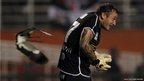 A Southern Lapwing bird flies past goalkeeper Cristian Vampestrini