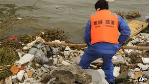 "A sanitation worker collects a dead pig from Shanghai""s main waterway on March 11, 2013."