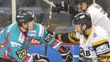 Belfast's Brock Matheson clashes with Panthers opponent David Clarke