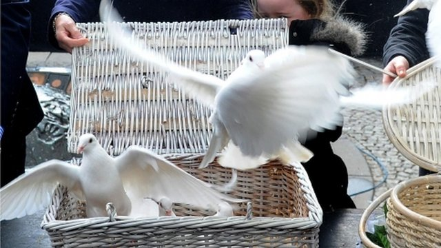 Doves released from basket
